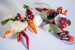 Garlics, chili peppers, bay leaves Stock Photography