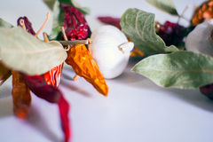 Garlics, chili peppers, bay leaves Stock Photo