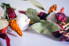Garlics, chili peppers, bay leaves Stock Image