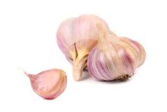 Garlics and clove. Royalty Free Stock Photos