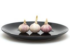 Garlics drie op een plaat Royalty-vrije Stock Fotografie