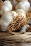 Garlics em uma cesta Foto de Stock