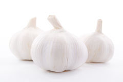 Garlics fresco tre su priorità bassa bianca Immagini Stock Libere da Diritti
