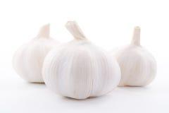 Garlics fresco tres en el fondo blanco Imágenes de archivo libres de regalías