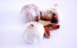 Garlics Stock Image