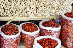 Garlics i Chilies Obraz Royalty Free