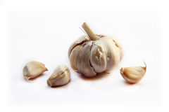 Garlics. Royalty Free Stock Photography