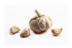 Garlics. Royalty Free Stock Photography