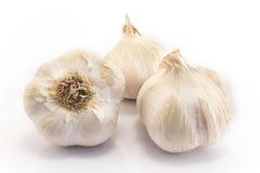 Garlics isolated on white Stock Photos