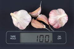 Garlics on kitchen scale Royalty Free Stock Photo
