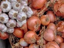 Garlics och lökar Royaltyfri Bild