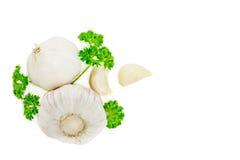 Garlics och persilja som isoleras på vit Royaltyfria Foton