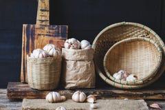 Garlics Stock Photography