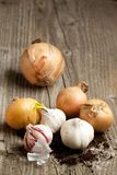 Garlics and onions on wood Stock Photos