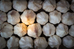 Garlics op houten raad Royalty-vrije Stock Foto