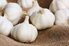 Garlics op linnen Royalty-vrije Stock Foto