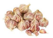 Garlics op wit wordt geïsoleerd (met schaduwen die) Stock Foto