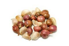 Garlics and shallots Royalty Free Stock Photography