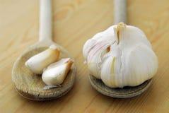 Garlics and spoons Stock Photos