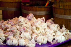 Garlics su un servizio Immagine Stock Libera da Diritti