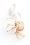 Garlics sur le blanc photographie stock