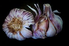 Garlics w czarnym tle Zdjęcia Royalty Free