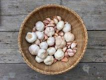 Garlics w koszu Obraz Stock