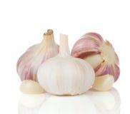 Garlics on white. Garlics glove on white background Royalty Free Stock Photography