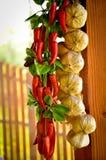 Garlin e corda dos pimentões Fotos de Stock