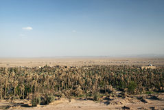 Garmeh Oaselandschaft in der Iran-der Wüste Lizenzfreie Stockfotografie