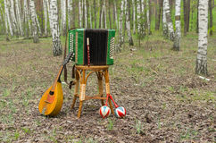 Garmonika, mandoline, maracas e pífano em uma floresta Foto de Stock