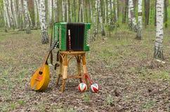 Garmonika, mandoline, maracas et fifre dans une forêt Photo stock