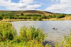 Garn See-lokales Naturreservat in Blaenavon, Wales, Großbritannien Lizenzfreie Stockfotos