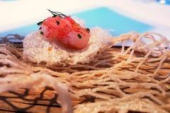 Garnaal met de schil en de grapefruit van het porvarkensvlees stock fotografie