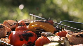 Garnalen en plantaardige vleespennen bij de grill stock video