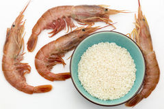 Garnalen en rijst Stock Foto's