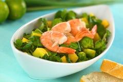 Garnalen op de Salade van de Witte waterkers royalty-vrije stock foto