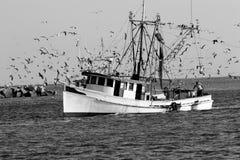 Garnalenboot Stock Foto