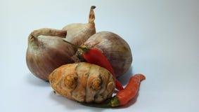 Garnalendeeg & x28; sambal belacan& x29; royalty-vrije stock foto's