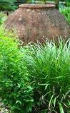 Garncarstwo w garden2 Zdjęcia Stock