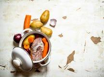 Garnek polewka od mięsa i warzyw Fotografia Royalty Free