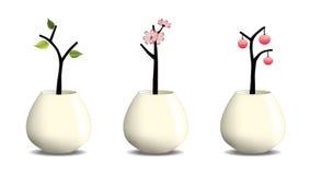 garnek roślinnych Fotografia Stock