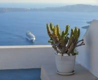 Garnek z kaktusem na werandzie obraz royalty free