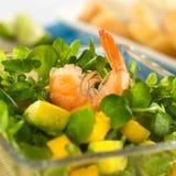 Garnele auf Brunnenkresse-Salat Lizenzfreies Stockfoto