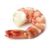garnele biały odosobnione tło krewetki Owoce morza Zdjęcia Royalty Free