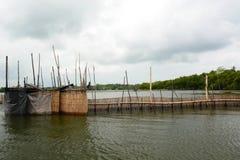 Garnele, die Sperre bewirtschaftet Madu-ganga Sumpfgebiete Balapitiya Sri Lanka lizenzfreie stockbilder