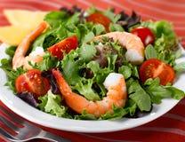 Garnele-Kopfsalat-Salat Stockbilder