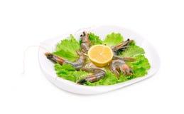 Garnelen auf Platte mit Kopfsalat und Zitrone Stockfotografie