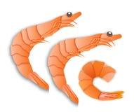 Garnelen, das Menü ist eine Zartheit, gekochte Meeresfrüchte, Papiereinfassungsart lizenzfreie abbildung