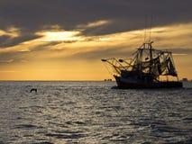 Garnelenboot, das der Garnele verlässt lizenzfreie stockbilder